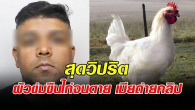 Photo of สุดวิปริต หนุ่มวัย37 ข่มขืนไก่ ให้เมียถ่ายคลิป ร่วมแจมด้วย